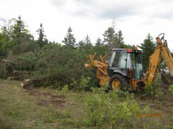 Clearing the Land